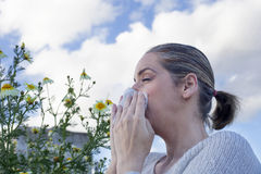 Woman sneezing in a daisy flowers meadow Stock Photography