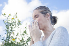 Woman sneezing in a daisy flowers meadow Royalty Free Stock Photos