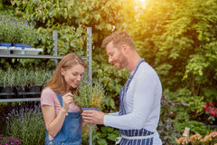 Woman sniffing potted flower Royalty Free Stock Images