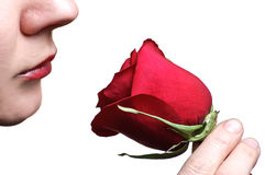 Woman sniffing red rose Stock Photos