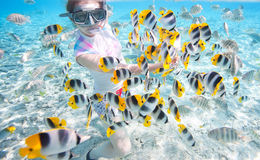 Woman snorkeling Royalty Free Stock Images