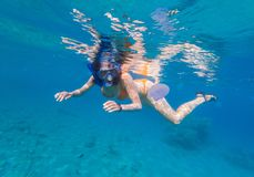 Woman snorkeling above coral reef royalty free stock images