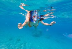 Woman snorkeling above coral reef. Underwater shot of a young woman snorkeling in tropical sea above coral reef. Girl swimming with jellyfishes stock images