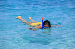 Woman snorkeling on the beach Stock Photography