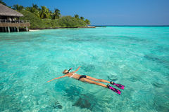Woman snorkeling in clear tropical waters in front of exotic isl Stock Images