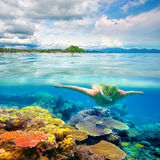 Woman snorkeling in clear tropical waters in front of exotic isl Royalty Free Stock Photography