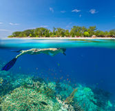 Woman snorkeling in clear tropical waterson a background of exot Stock Photography