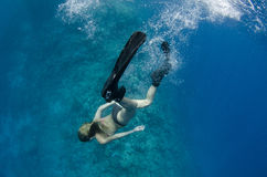 Woman free diving and snorkeling on a coral reef Royalty Free Stock Images