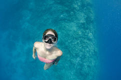 Woman free diving and snorkeling on a coral reef Stock Photography