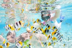 Woman snorkeling with fish Stock Photo