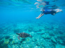 Woman snorkeling with green turtle underwater photo. Sea turtle with swimming woman in mask and snorkeling gear. Exotic sea animals. Tropical island vacation Stock Image