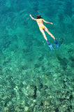Woman snorkeling in transparent shallow sea Royalty Free Stock Photo