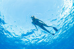 Woman Snorkeling in Tropical Ocean Royalty Free Stock Photo