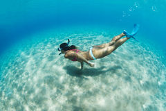 Woman snorkeling in tropical sea Stock Image