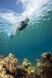 Woman snorkeling in tropical water Stock Photos