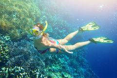 Woman at snorkeling in the tropical water. Young woman at snorkeling in the tropical water. Traveling, active lifestyle concept royalty free stock images