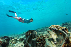 Woman snorkeling. Underwater photo of woman snorkeling and free diving in a clear tropical water at coral reef with giant clams royalty free stock images