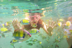 Woman snorkeling underwater in sea Royalty Free Stock Photography