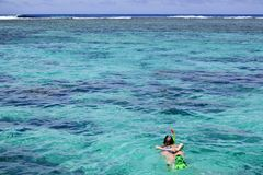 Woman snorkelling alone in Rarotonga Cook Islands royalty free stock images