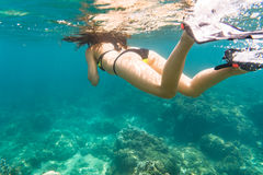 Woman snorkelling over floor of tropical sea Stock Image