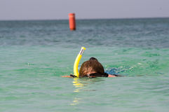 Woman snorkles in the caribbean. A woman snorkling in Grand Anse Bay in Grenada Royalty Free Stock Photos