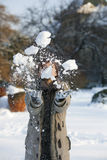 Woman in the snow Stock Images
