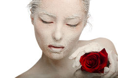 Woman in the snow with a red rose Stock Image