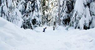 Woman snowboarding through forest 4k. Woman snowboarding through forest during winter 4k stock video