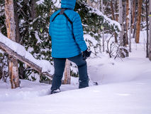 Woman snowshoeing, breaking trail. Female snowshoeing in winter wonderland royalty free stock photo