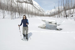 Woman snowshoeing in the Canadian rockies. British columbia stock photos