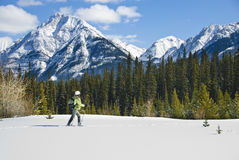 Woman snowshoeing in the Canadian rockies. British columbia royalty free stock photography