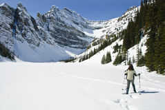 Woman snowshoeing in the Canadian rockies Royalty Free Stock Photo