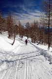 Woman snowshoeing descending Stock Photo