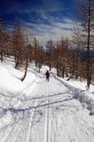 Woman snowshoeing descending. Italian alps, Val Bognanco Stock Photo