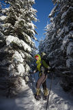 Woman snowshoeing in winter Carpathian mountains.  Stock Photo