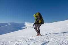 Woman snowshoeing in winter Carpathian mountains.  Royalty Free Stock Photo