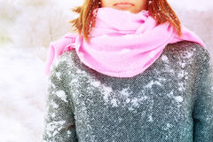 Woman in the snowy coat Stock Image