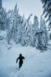 Woman on a snowy path stock image