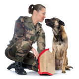 Woman soldier and malinois. In front of white background Royalty Free Stock Photos