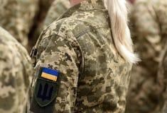 Woman soldier. Woman in army. Ukraine military uniform. Ukrainian troops.  royalty free stock photo