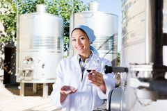 Woman sommelier is tasting wine at wine factory. Woman sommelier is tasting wine at Italian wine factory stock photos