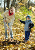 Woman with   son setting tree in autumn Royalty Free Stock Image