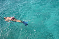 Woman Sorkeling. Snorkeling off the coast of Cozumel offers people spectacular views of marine life in crystal clear waters Royalty Free Stock Image