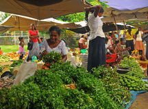 Woman sorting salad 2 - Tangalla (Sri Lanka, Asia) Royalty Free Stock Photography