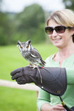 Woman with a Southern White-faced Owl on her Falconry Glove Stock Image