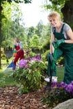 Woman with spade in garden Royalty Free Stock Photos