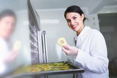 Woman Specialist in Food Quality and Health Control Checking Apples. Woman Specialist Working With Food Drying Chamber Checking Sliced Apples before drying Stock Photos