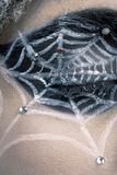 Woman with spider cobweb Royalty Free Stock Photos