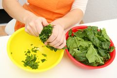 Woman with a spinach in a modern kitchen Royalty Free Stock Photo