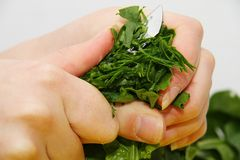 Woman with a spinach in a modern kitchen Royalty Free Stock Image